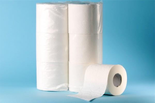 Toilettenpapier Zellstoff, 3-lagig
